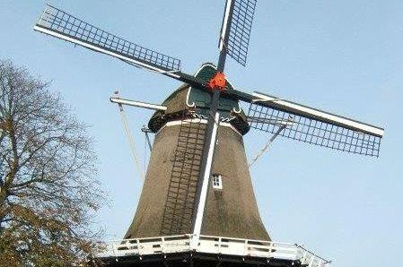 Windmolen biotoop